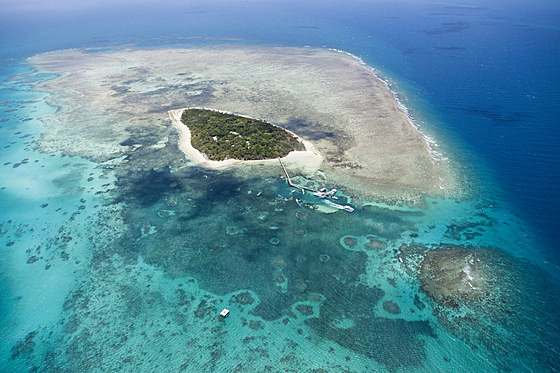 Green Island Grosses Barriere Riff / Aerial View of Great Barrier Reef