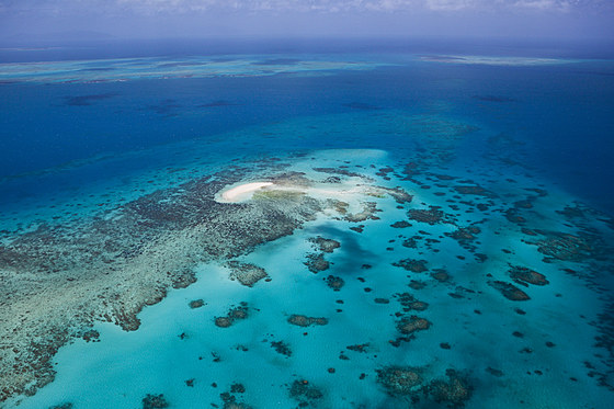 Luftaufnahme Grosses Barriere Riff / Aerial View of Great Barrier Reef