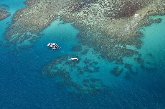 Tauchboote am Grossen Barriere Riff / Diving Boat at Great Barrier Reef