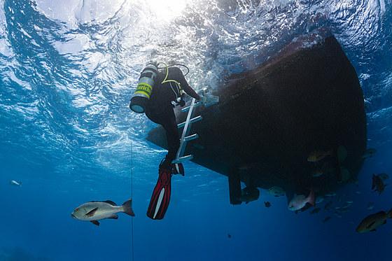 Taucher klettert auf Tauchboot / Scuba Diver climbing Boat