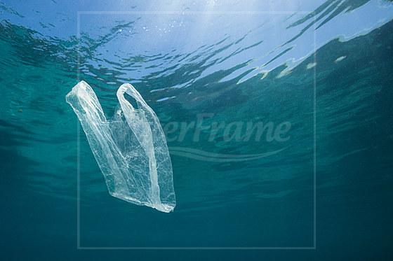 Plastiktuete treibt im Meer / Plastic Bag adrift in Ocean