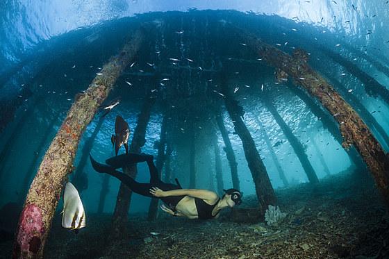 Freitaucher unter Aborek Jetty / Apnoe diver under Aborek Jetty