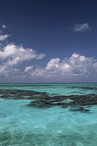 Turneffe Atoll / Turneffe Atoll