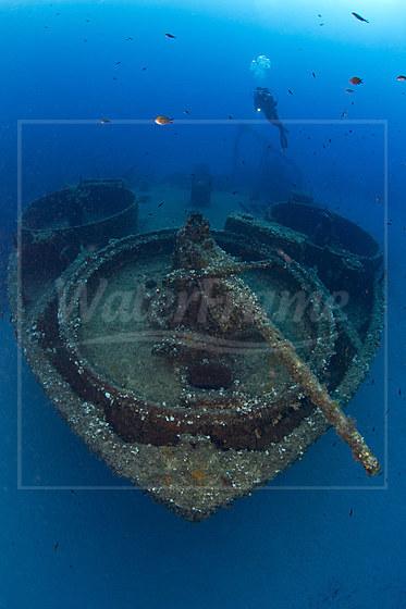 Geschuetz am Bug des LST 349 Wrack / Gun on Bow of LST 349 Wreck