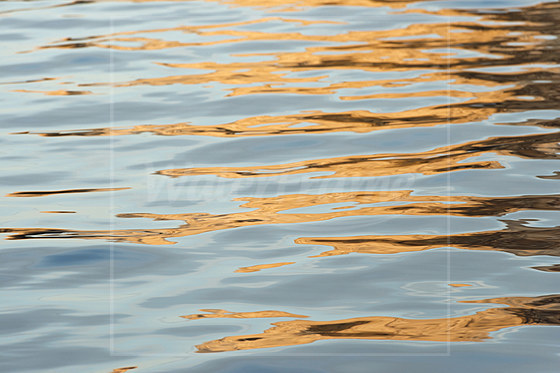 Rekflektionen auf der Wasseroberflaeche / Reflections on Water Surface
