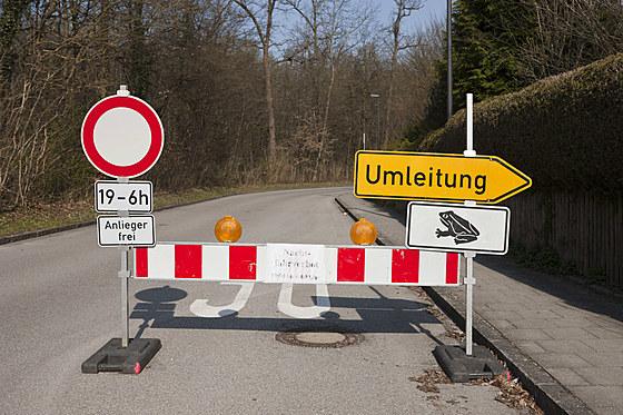Strassensperre wegen Kroetenwanderung / Roadblock for Toad Migration / Bufo bufo
